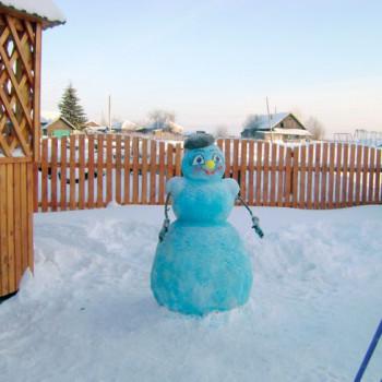Зима в Новоюгино, 2013 г.